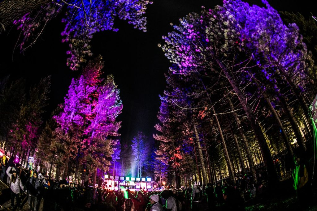 snowglobe music festival 2018 sugar pine trees